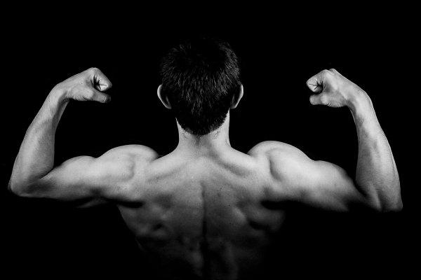 8 Kunci Membentuk Otot