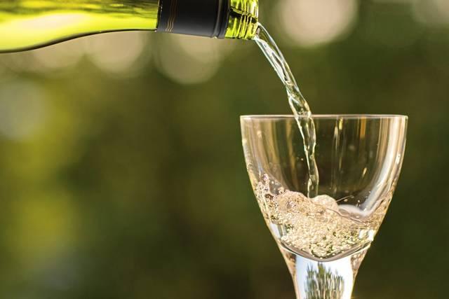 manfaat wine