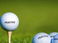 jenis stick golf