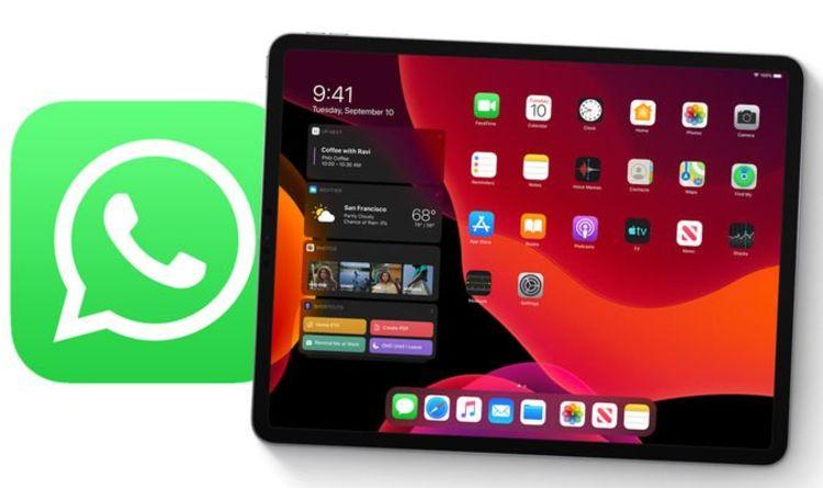 WhatsApp Akan Hadir Di iPad, Windows & MacOS